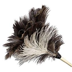 "Boardwalk 13FD Professional Ostrich Feather Duster 7"" Handle"