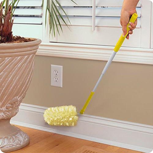 Surface Pet Odor Defense,