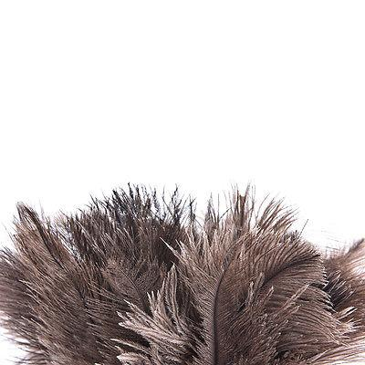 40cm Wooden Handled Ostrich Feather Fur Brush Duster